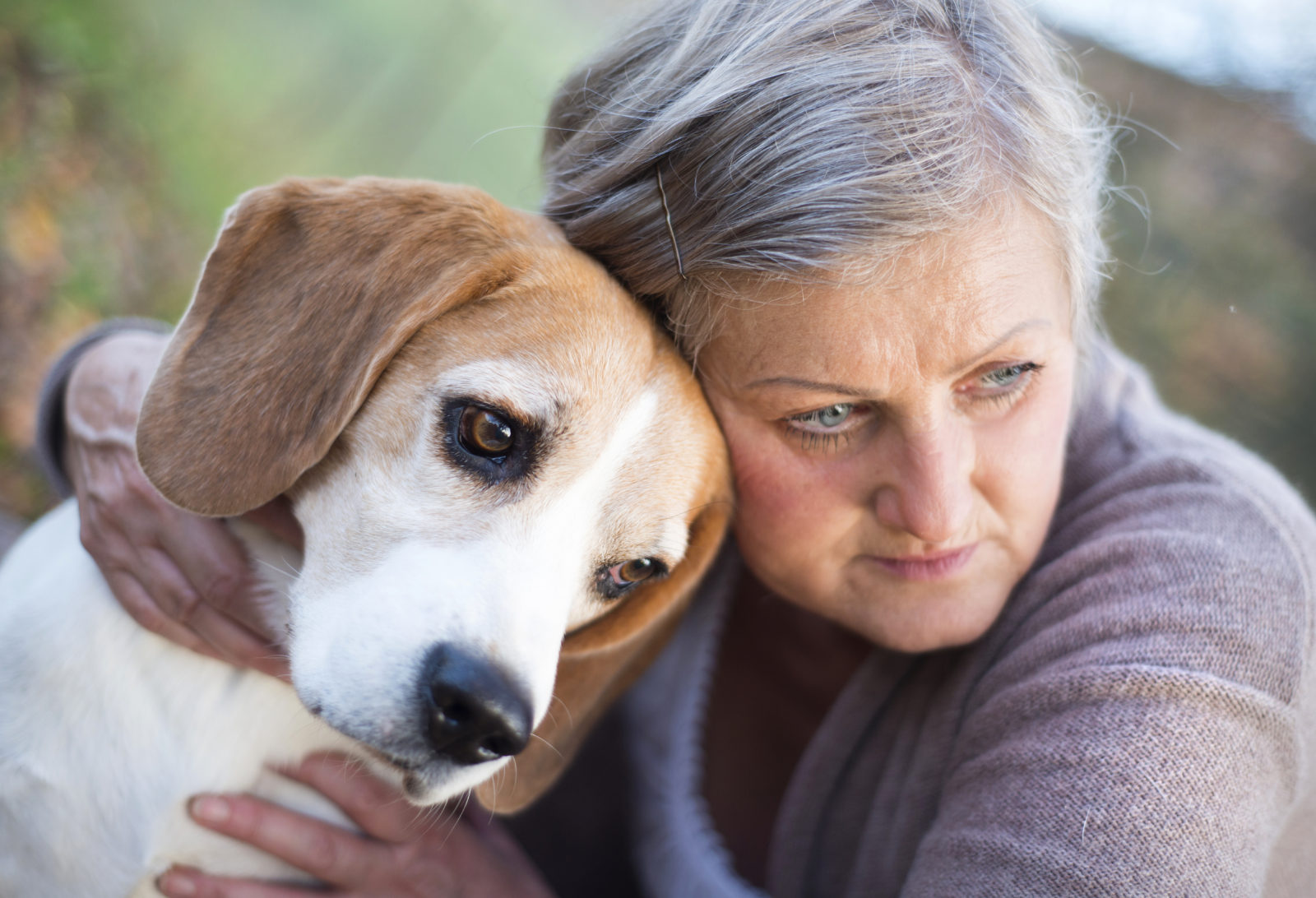 The Value of Pets in the Caregiver Process